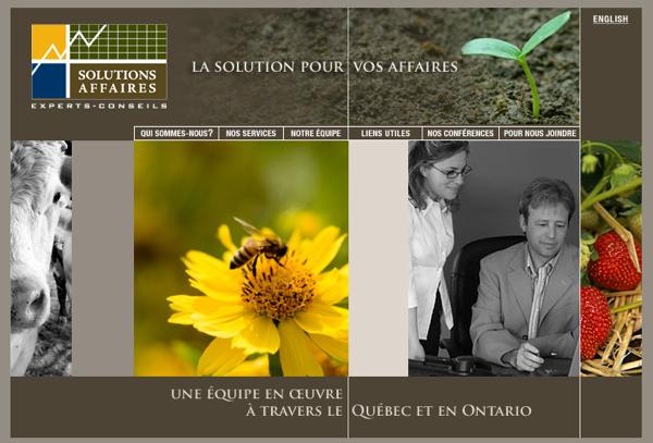 Solutions Affaires Experts-Conseils : Accueil